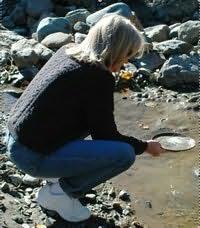 Shirleen Davies's picture