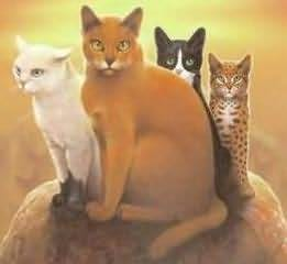 Erin Hunter's picture