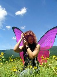 Laura L Sullivan's picture