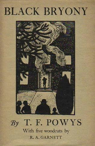 book cover of Black Bryony