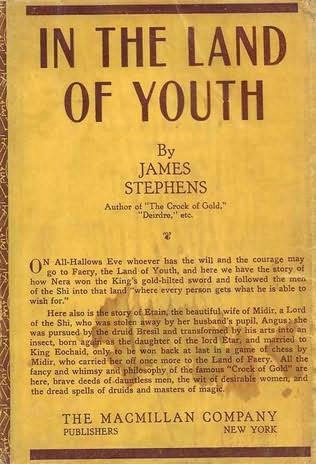 book cover of In the Land of Youth