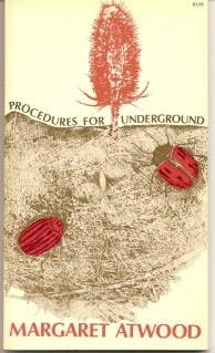 book cover of Procedures for Underground