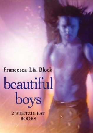 book cover of Beautiful Boys