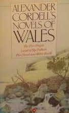 book cover of Novels of Wales