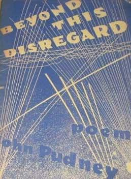 book cover of Beyond This Disregard