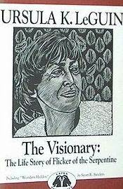 book cover of The Visionary, Wonders Hidden