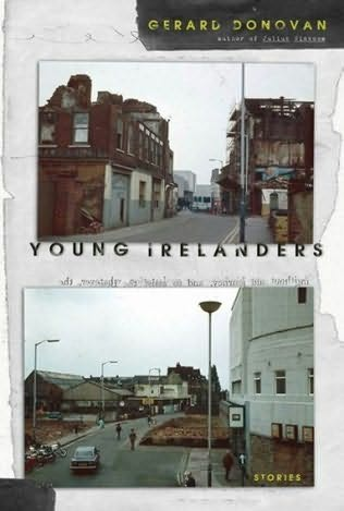 book cover of Young Irelanders