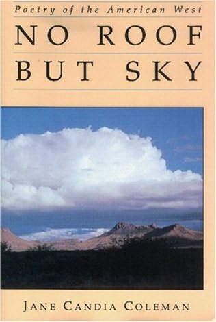 book cover of No Roof But Sky