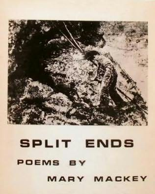 book cover of Split Ends