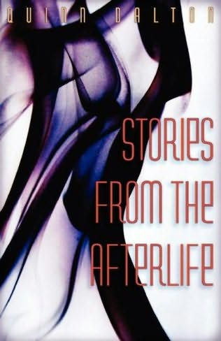 book cover of Stories from the Afterlife