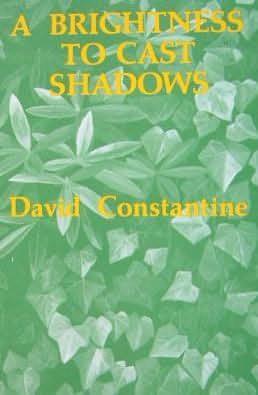 book cover of A Brightness to Cast Shadows