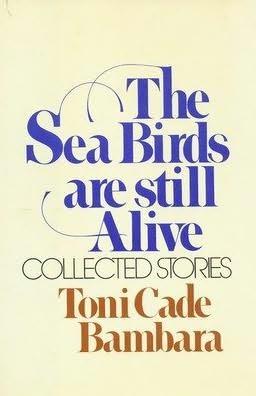 book cover of The Sea Birds Are Still Alive