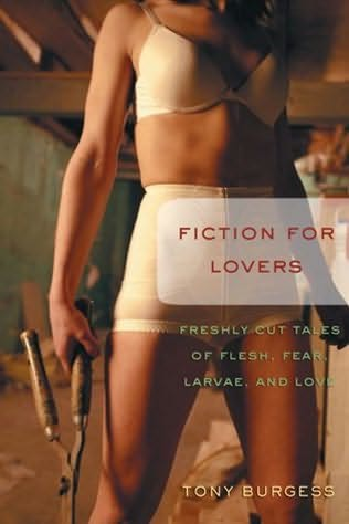 book cover of Fiction for Lovers