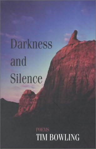 book cover of Darkness and Silence
