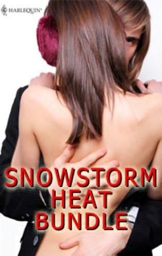 book cover of Snowstorm Heat Bundle