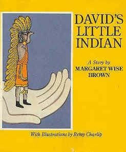 book cover of David\'s Little Indian