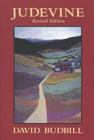 book cover of Judevine