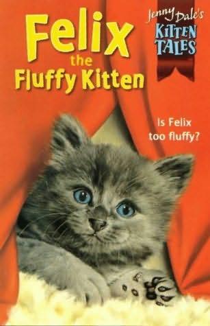 book cover of Felix the Fluffy Kitten