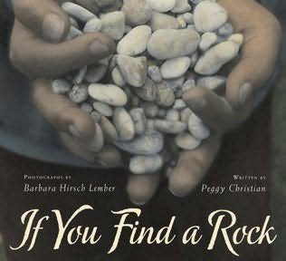 book cover of If You Find a Rock