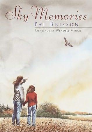 book cover of Sky Memories