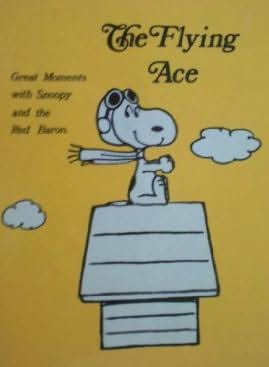 book cover of The Flying Ace