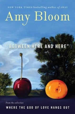 book cover of Between Here and Here