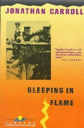 book cover of Sleeping in Flame
