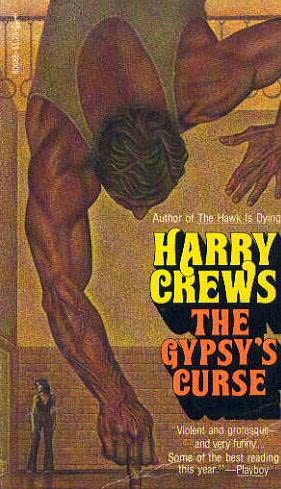 book cover of The Gypsy\'s Curse