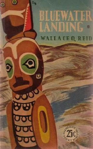 book cover of Bluewater Landing