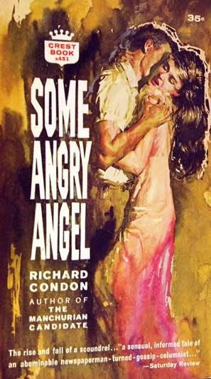 book cover of Some Angry Angel