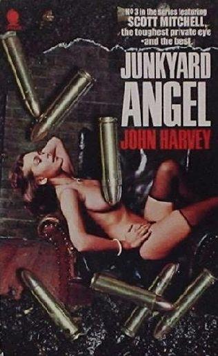 book cover of Junkyard Angel