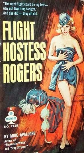 book cover of Flight Hostess Rogers