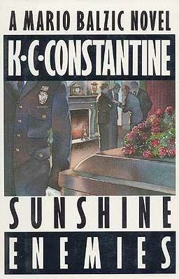 book cover of Sunshine Enemies