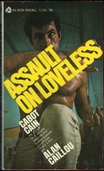book cover of Assault on Loveless