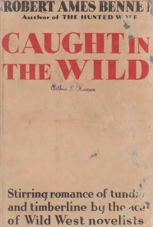book cover of Caught In The Wild