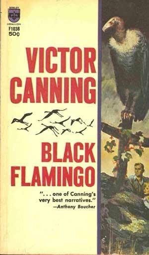 book cover of Black flamingo