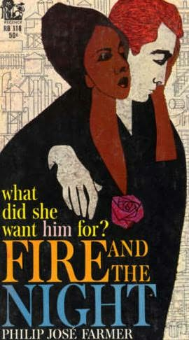 book cover of Fire and the Night