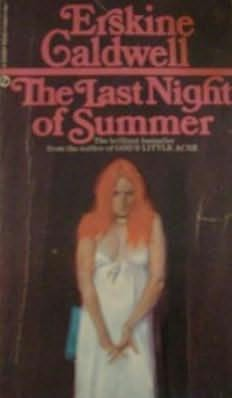 book cover of The Last Night of Summer