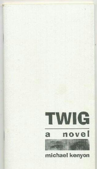 book cover of Twig