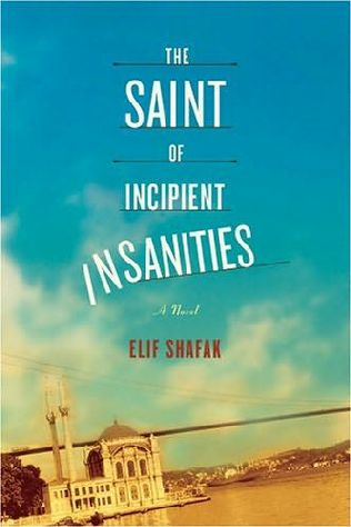 book cover of The Saint of Incipient Insanities