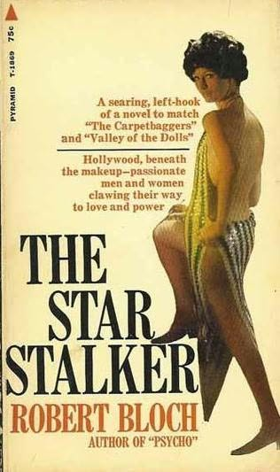 book cover of The Star Stalker