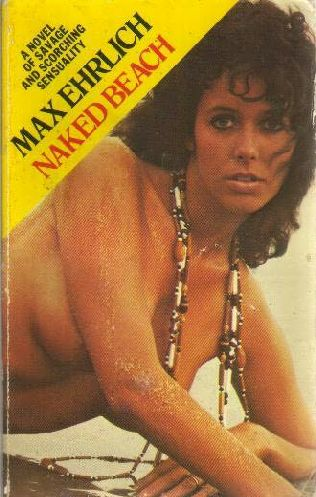 book cover of Naked Beach