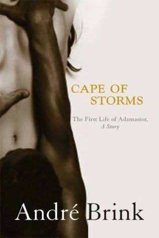 book cover of Cape of Storms