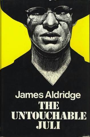 book cover of The Untouchable Juli