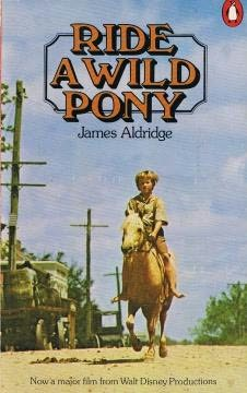book cover of Ride a Wild Pony