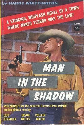 book cover of Man in the Shadow