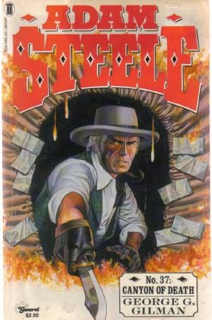 book cover of Canyon of Death