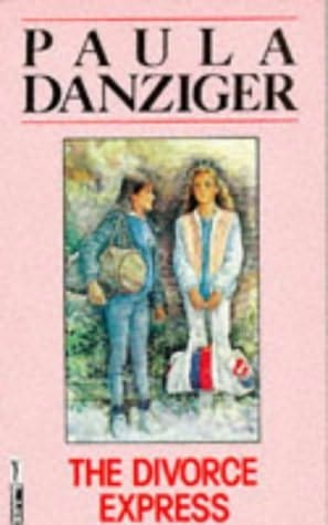 book cover of The Divorce Express