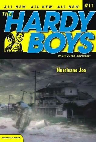 book cover of Hurricane Joe