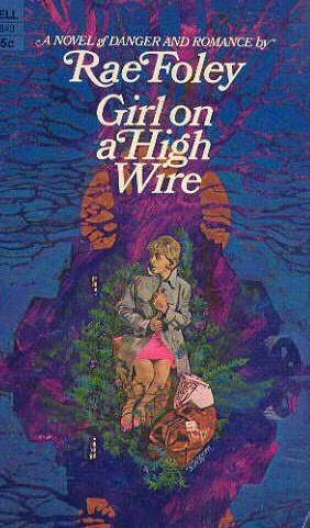 book cover of Girl on a High Wire